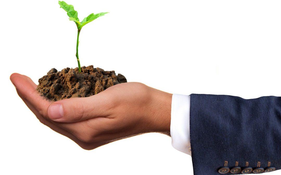 Diversification, comptabilité et rentabilité