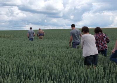 Agri-Innovation - Epis de Hesbaye