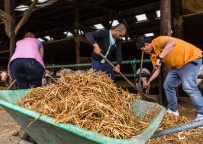 Ferme France - Agriculture sociale - Accueil Champêtre en Wallonie