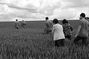 comptoir agri-innovation